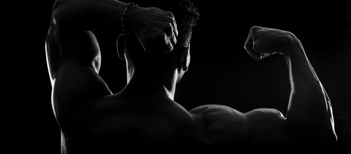 bodybuilder, fitness, silhouette